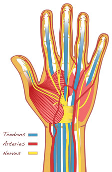most common hand wrist injuries bid needham